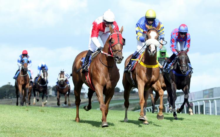 August Racing Fixtures at Brighton Racecourse
