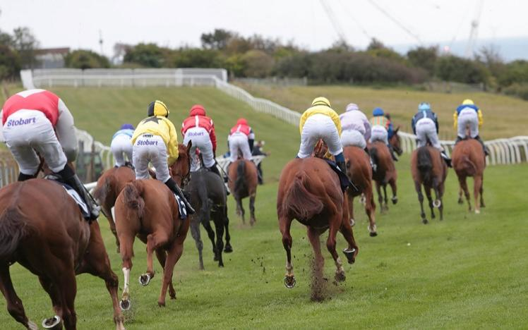 Brighton Racecourse Autumn flat racing report