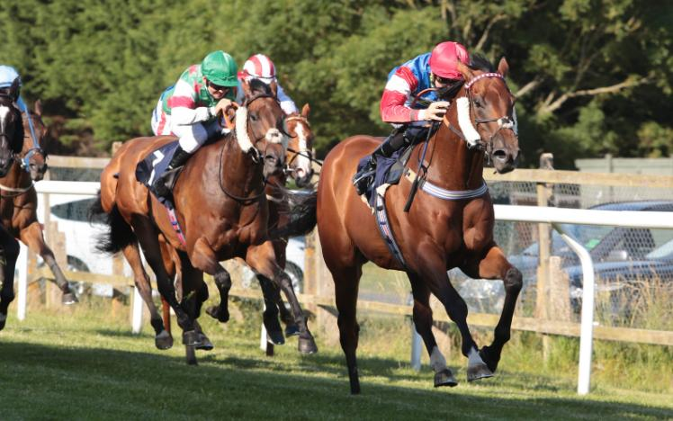 Horses race to the finish in the first race of the evening at Brighton Racecourse