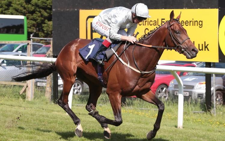 Read about the latest racing action at Brighton in our Summer race report from 3 June